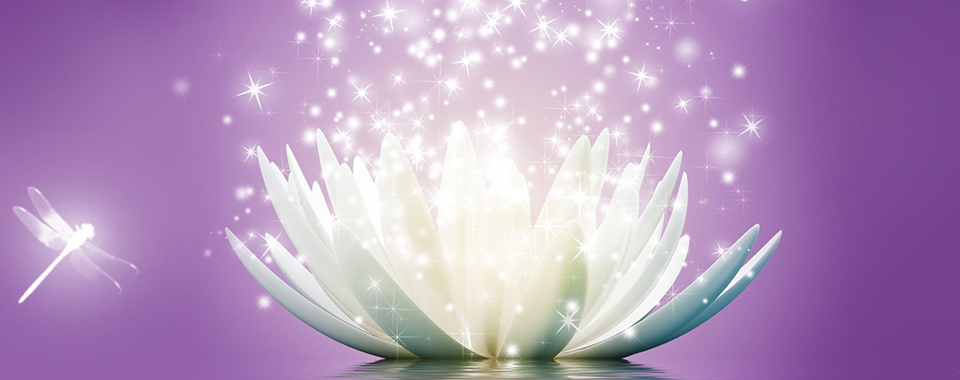 lotus-flower-sparkle